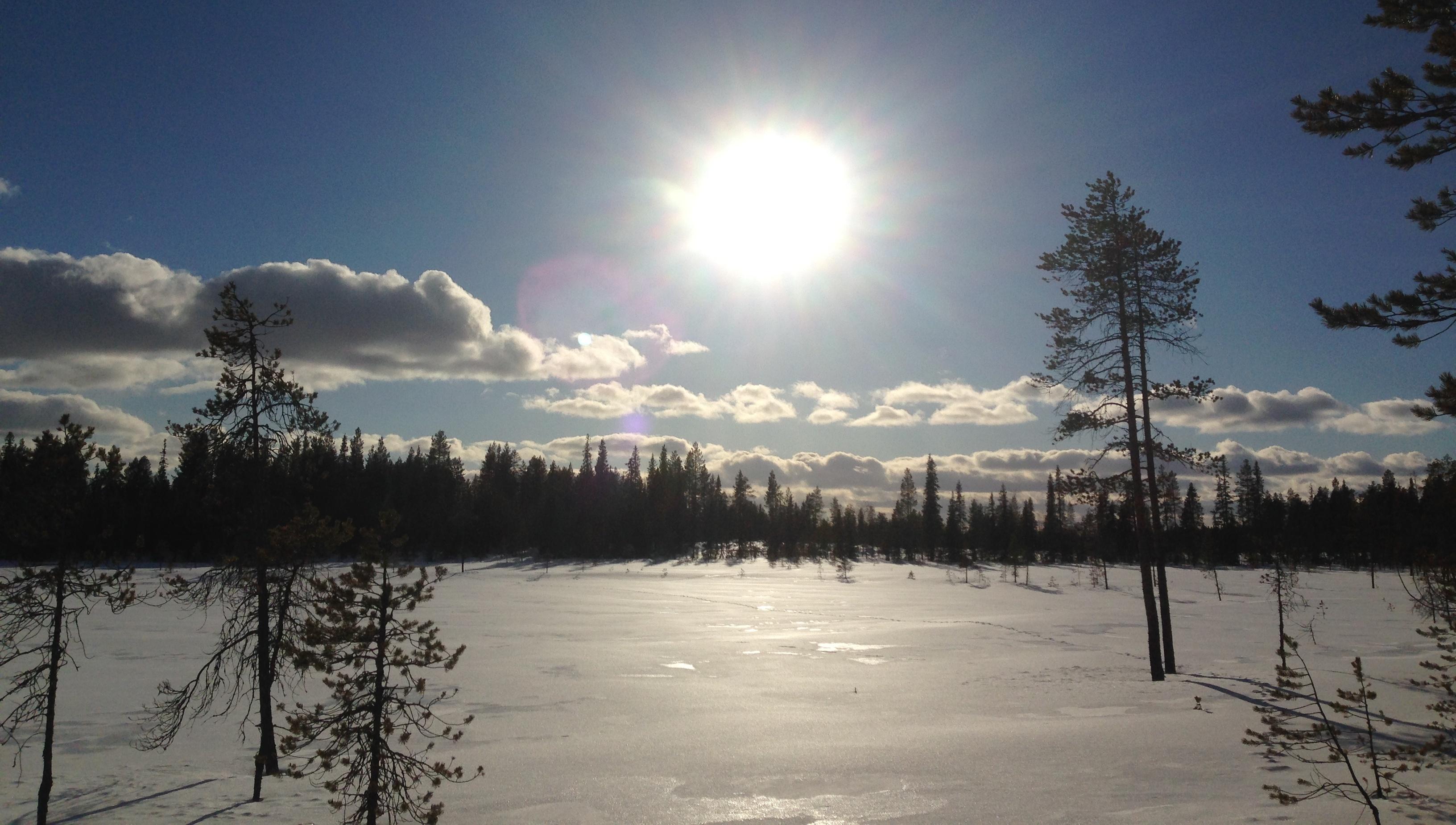 Humedal Congelado