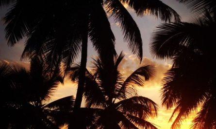 Atardecer en Arambol (Goa, India)