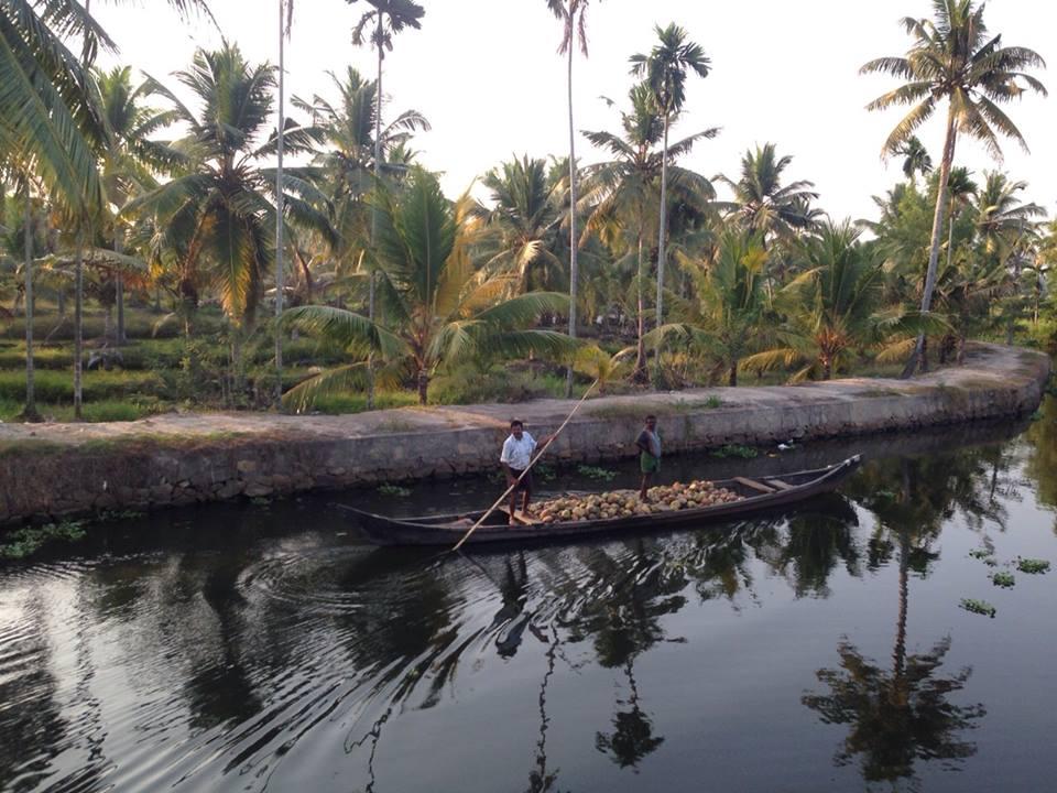 Vida local alrededor de los Backwaters de Kerala