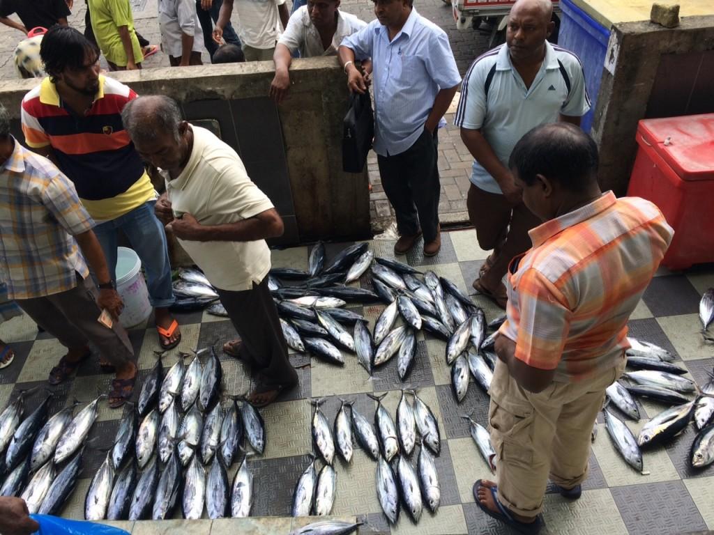 Qué hacer en Male (Maldivas)