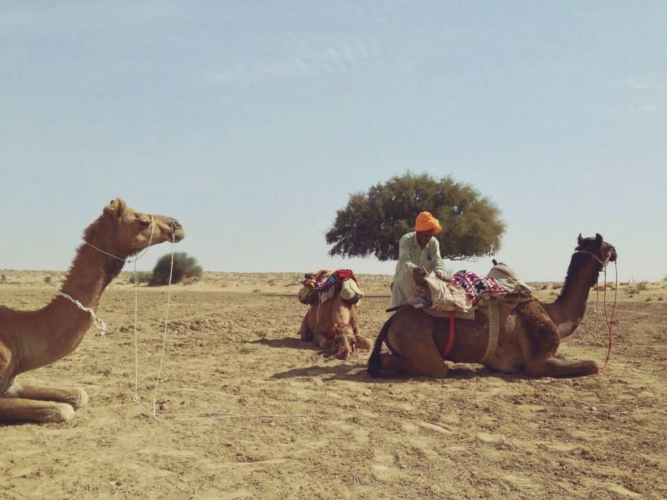 Desierto de Rajastan