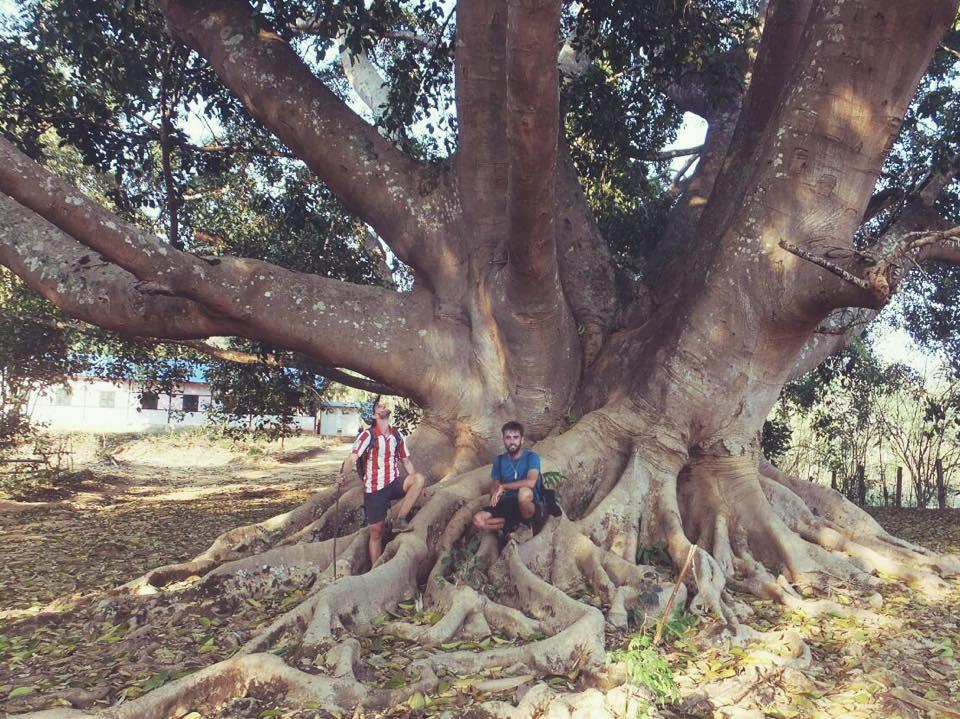 Trekking Hsipaw Shan y Palaung