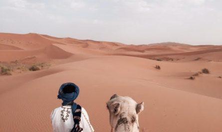 Qué hacer en Merzouga Marruecos