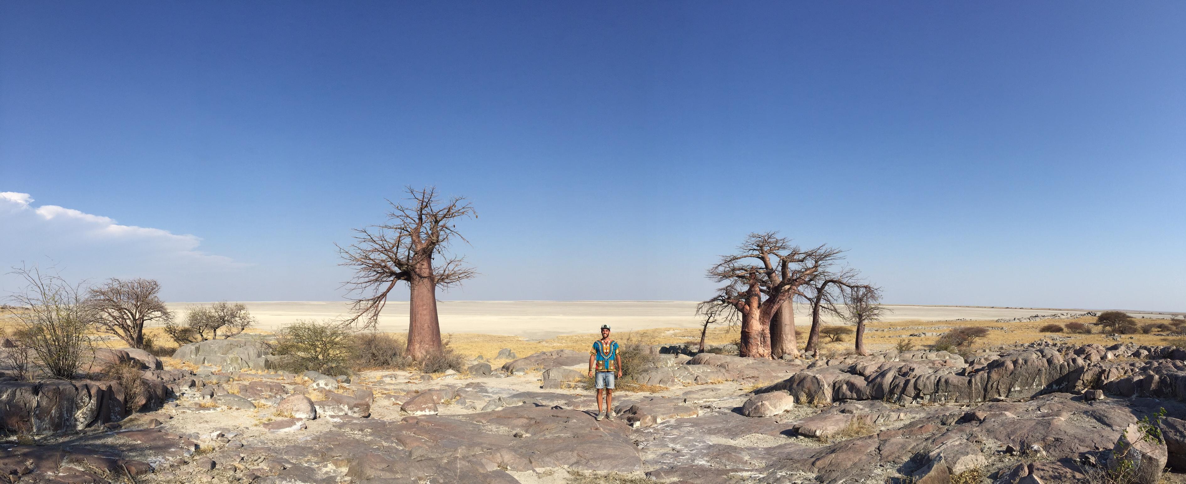 Baobab Pan