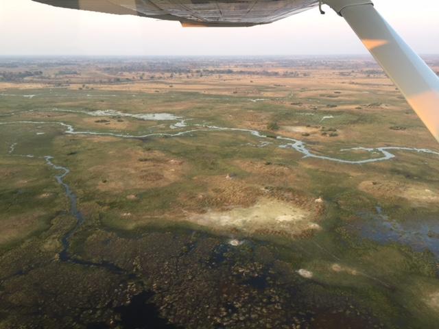 Vista Aerea Okavango