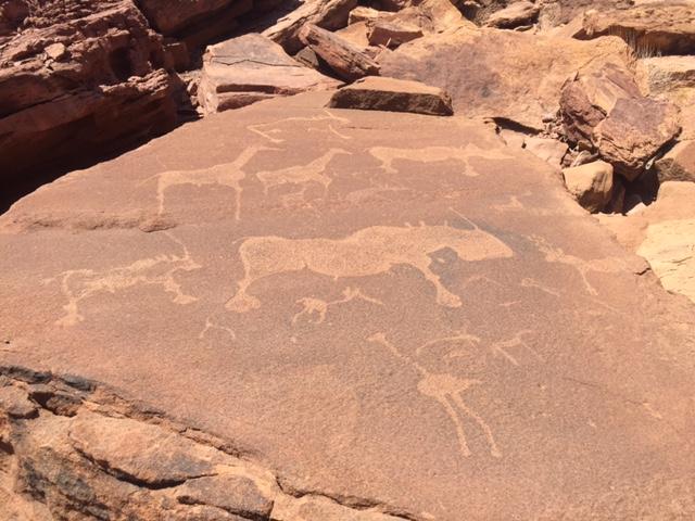 Varios animales carvados, entre los que destaca el rinoceronte, en Twyfelfontein (Namibia)