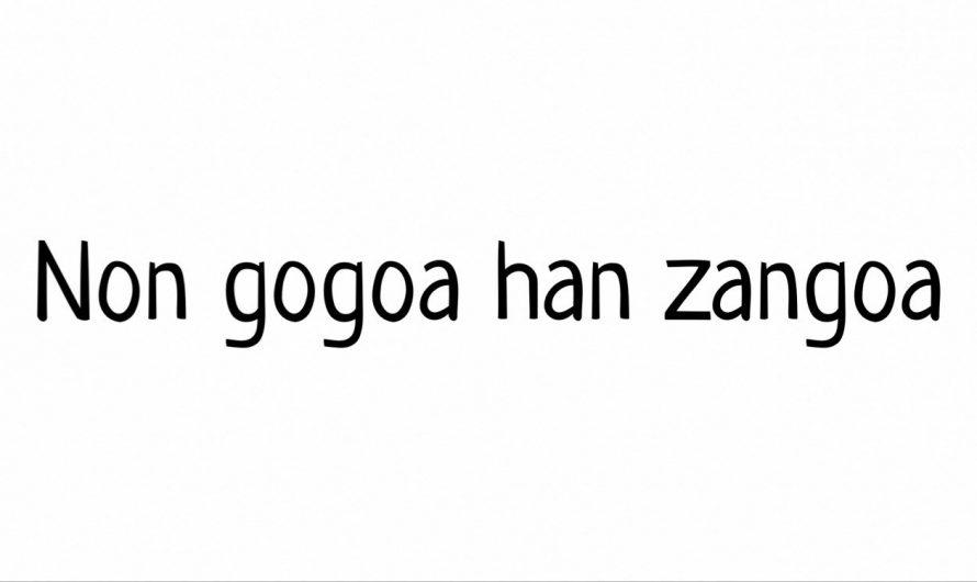 ¿Qué significa «non gogoa, han zangoa»?