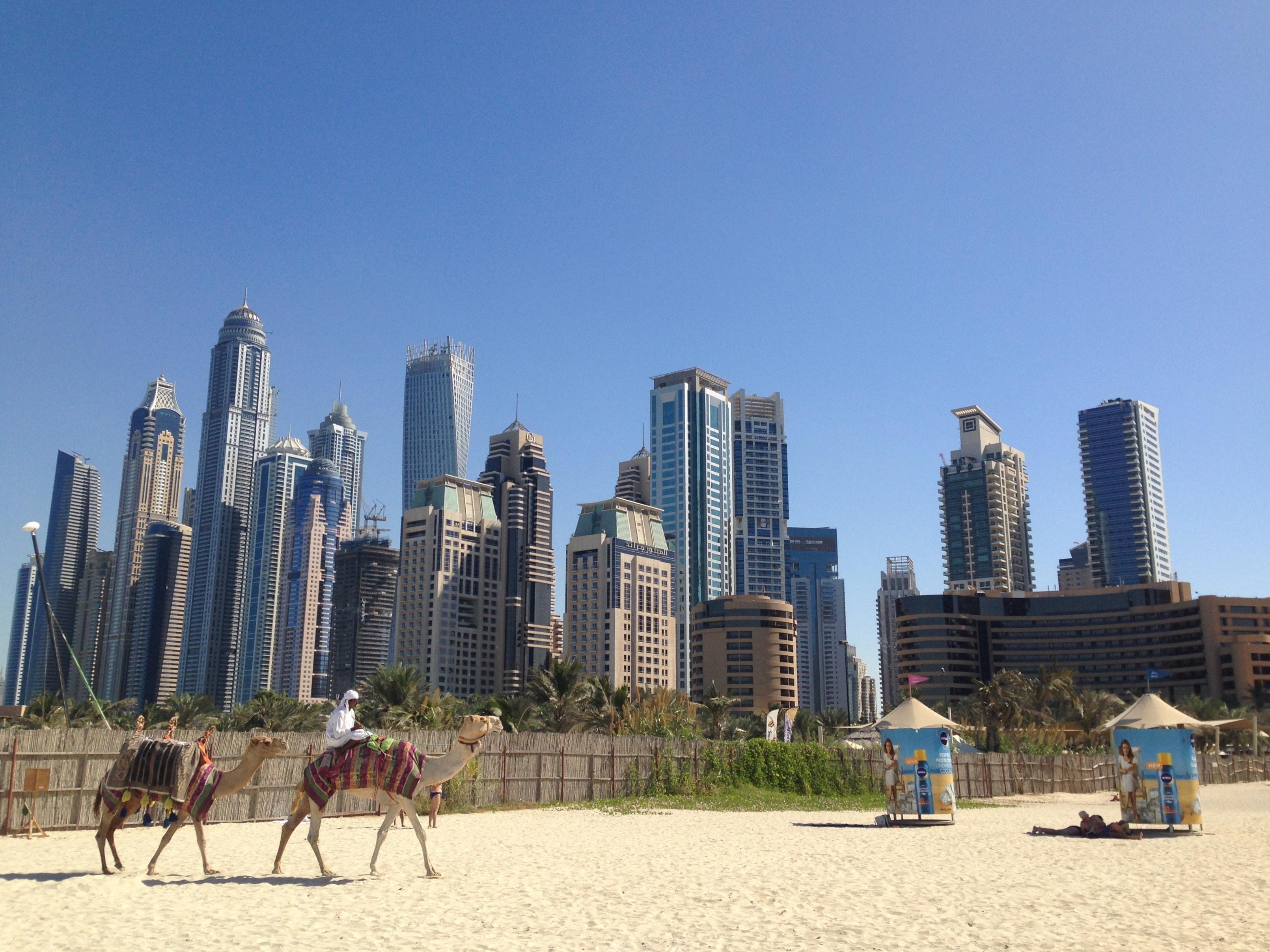 Qué hacer en Dubai en una escala
