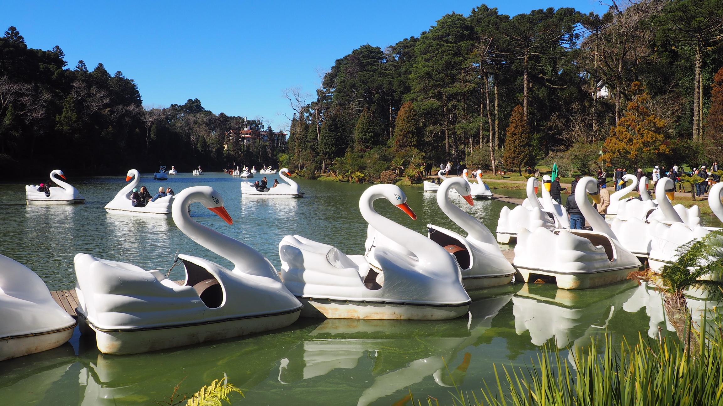 Las barcas con forma de cisne en las que se puede dar una vuelta por la Lagoa Negra, una de las cosas que hacer en Gramado (Brasil)