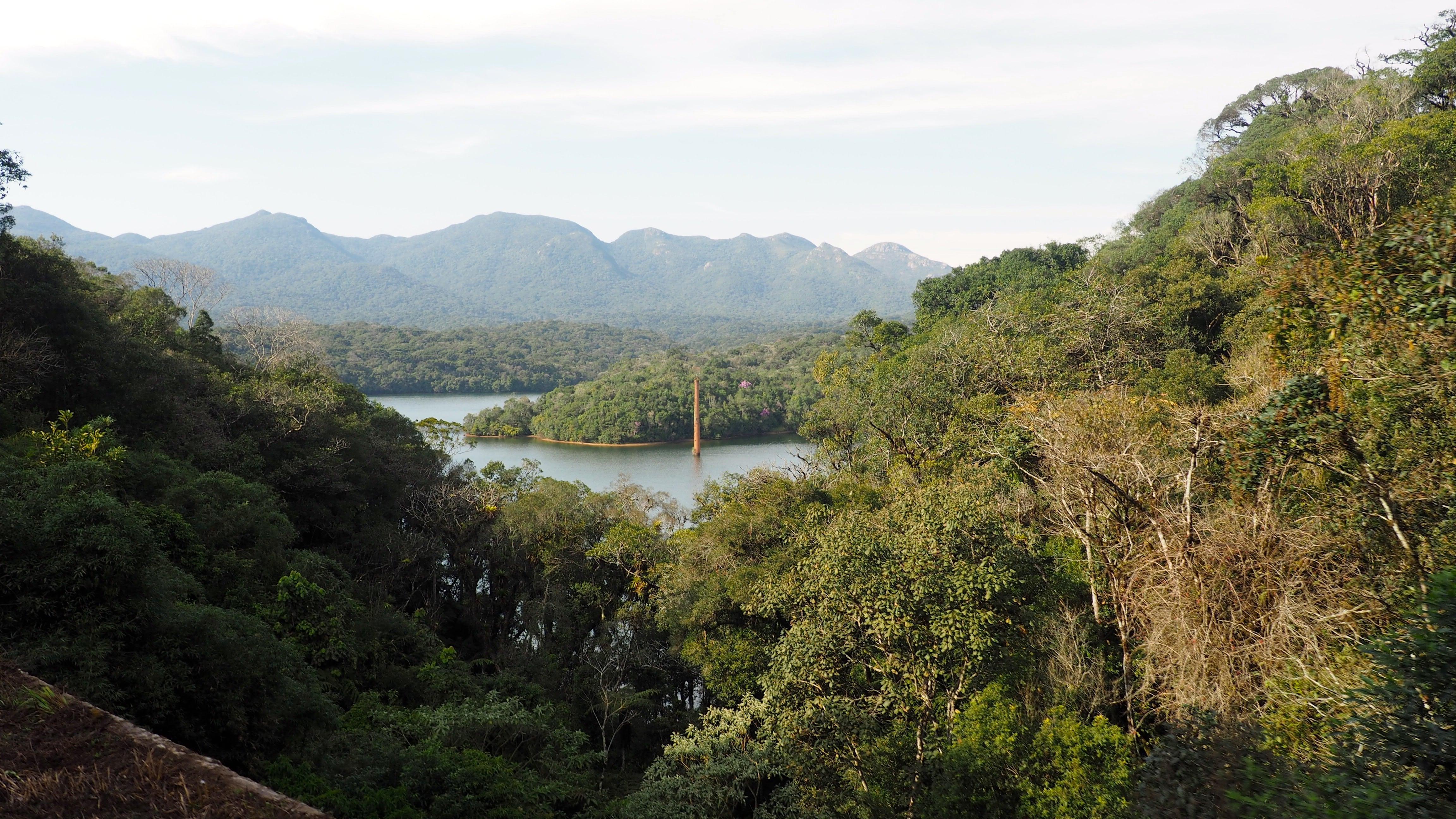 Vistas desde el Tren Turístico de Curitiba al entrar en la Serra do Mar