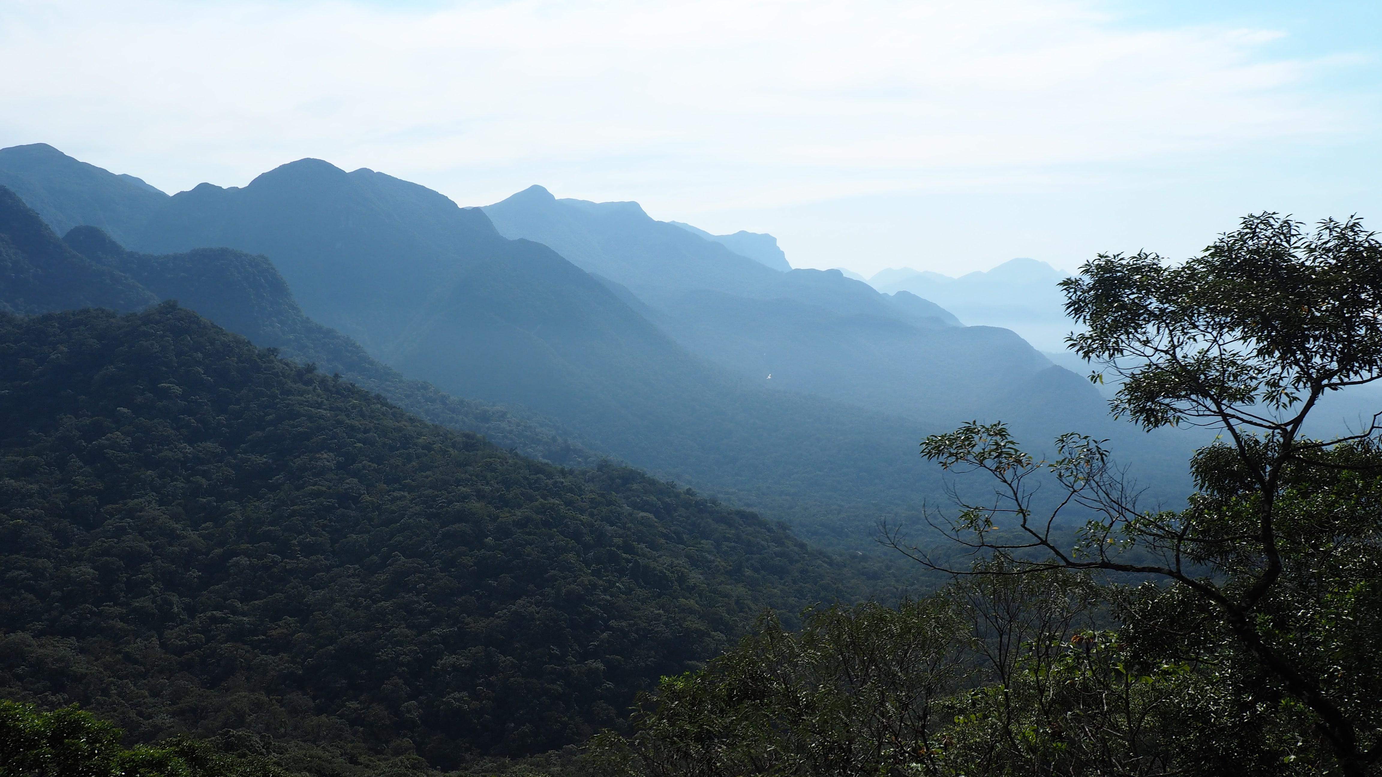 Vista panorámica de la Serra do Mar desde el tren Serra Verde Express