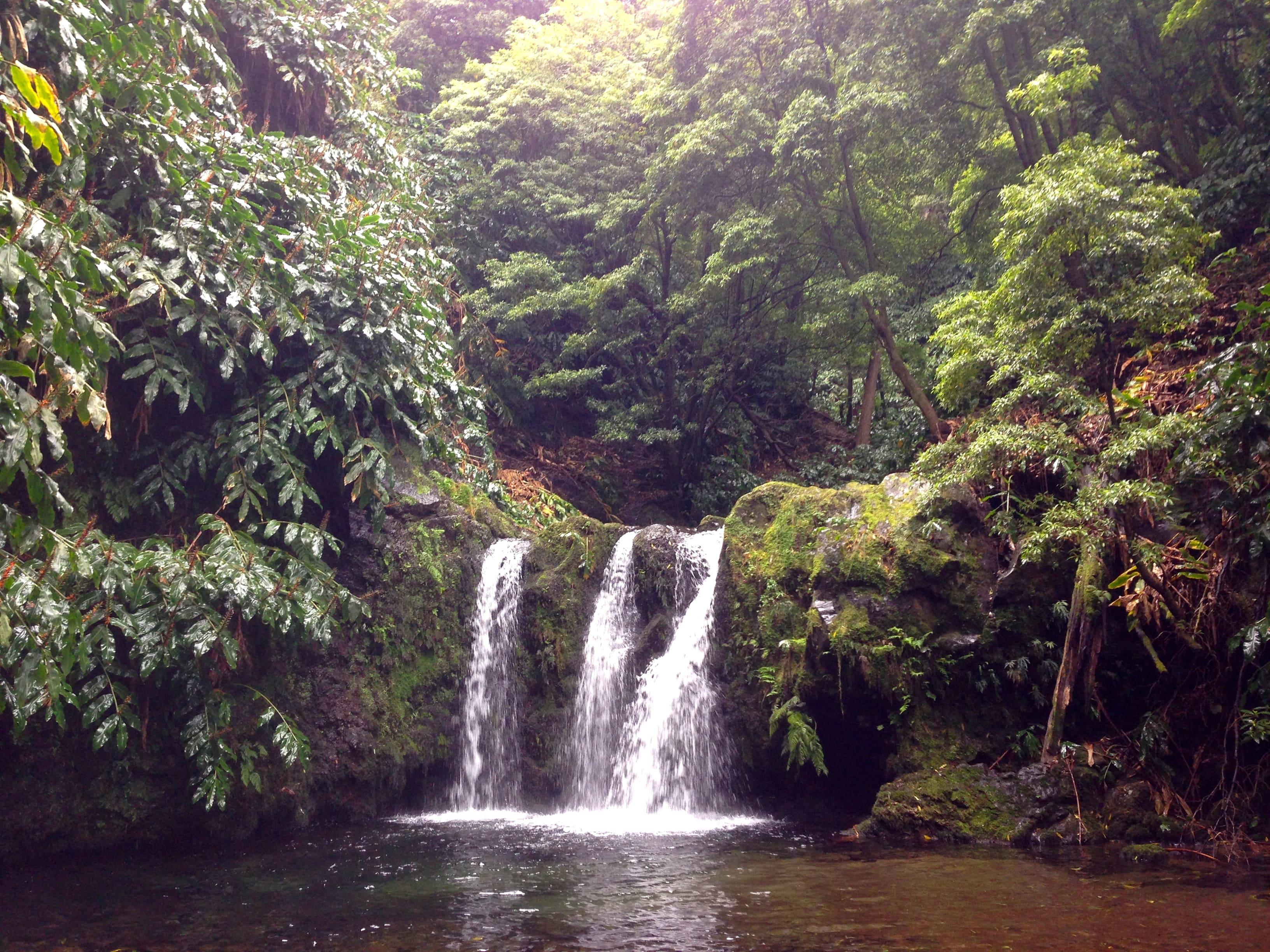 Cascada en São Miguel (Azores)