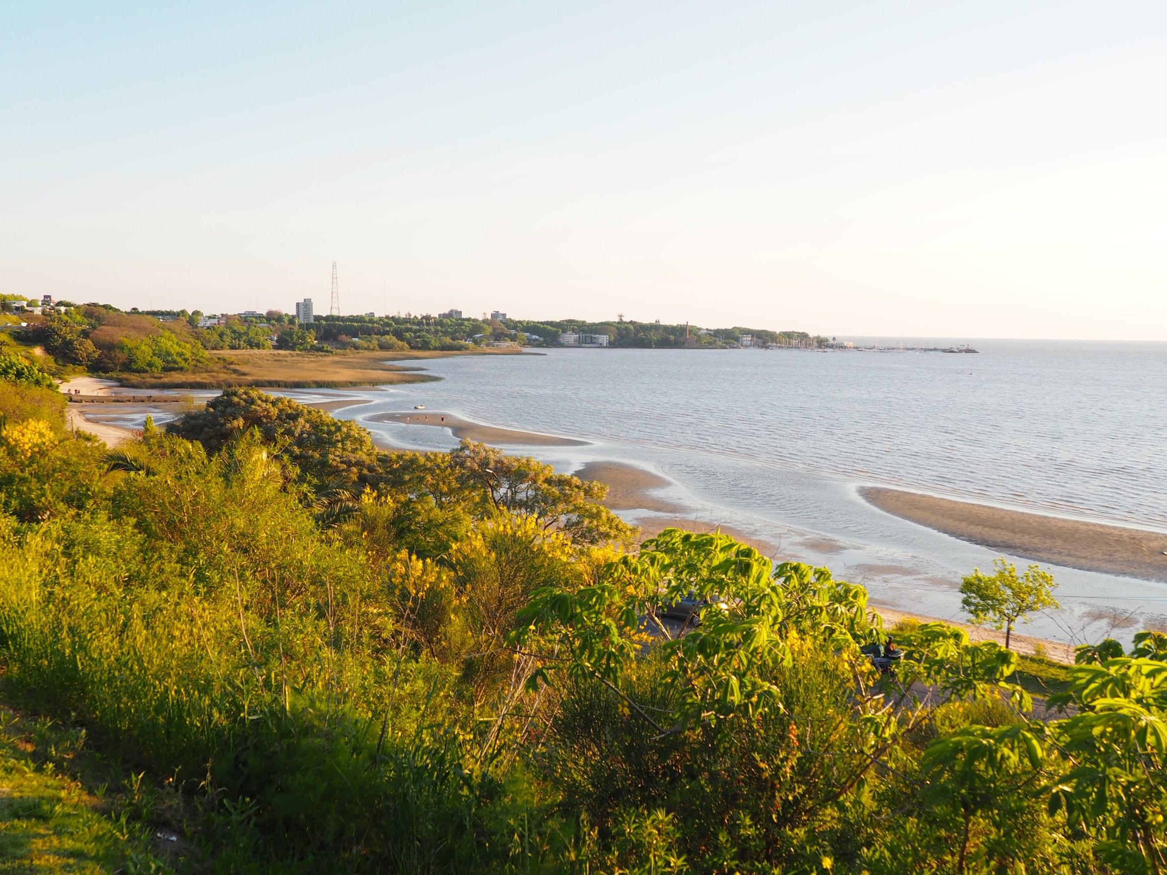 Vista de la playa con Colonia al fondo