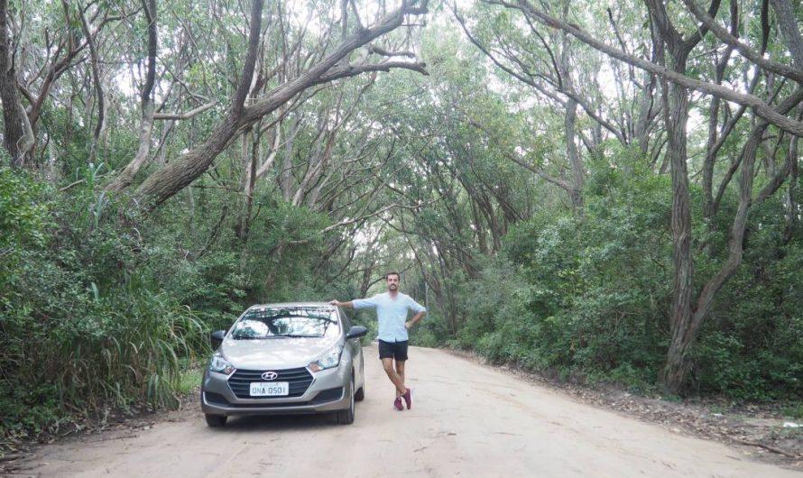 9 mejores cosas que ver y que hacer en Florianópolis