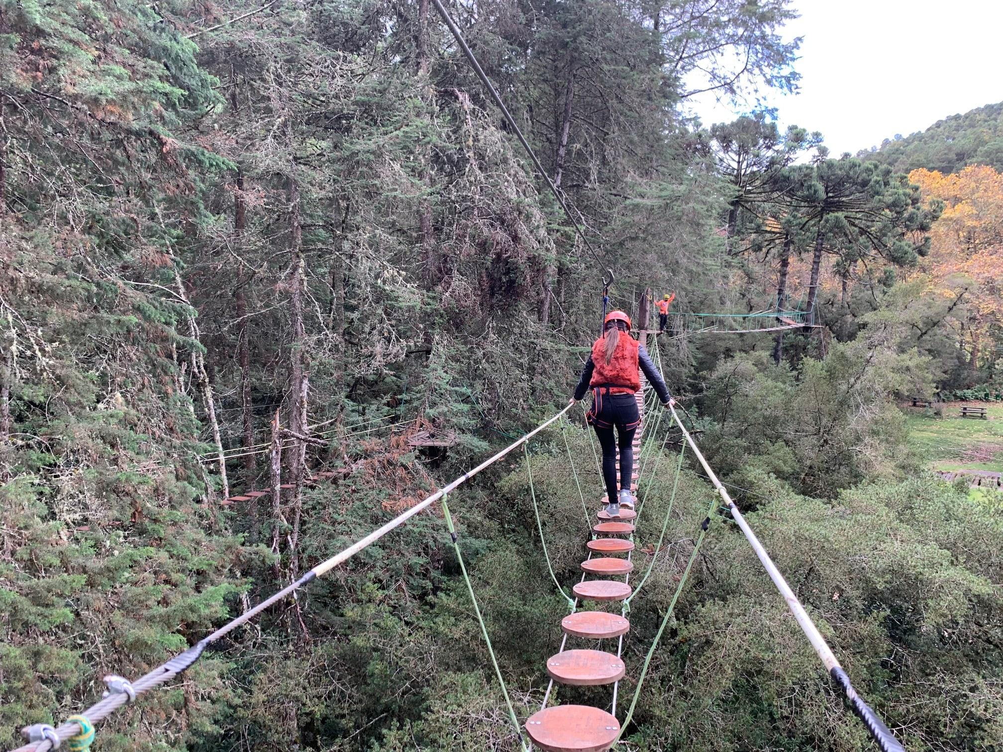 Arborismo en Campos (Brasil)