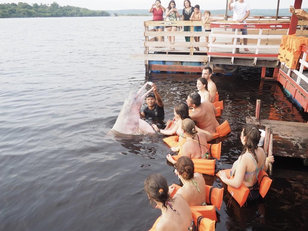 Ver los delfines rosas del Amazonas es una de las mejores actividades que hacer en Manaos
