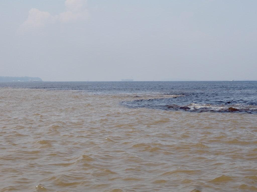 Encuentro de las Aguas, una de las mejores cosas que ver en Manaos