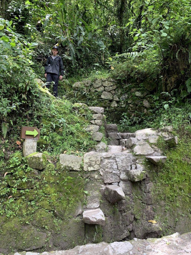 Sendero de Aguas Calientes a Machu Picchu