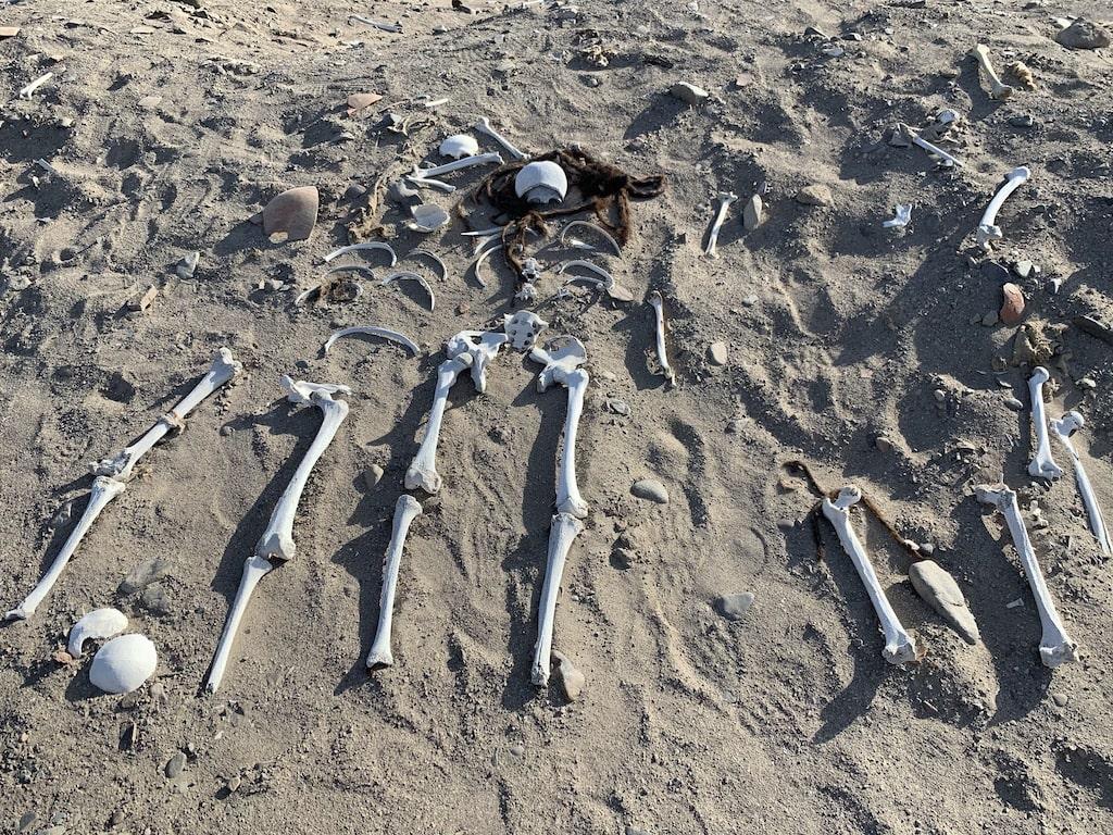 Tumba profanada en Nazca (Perú)